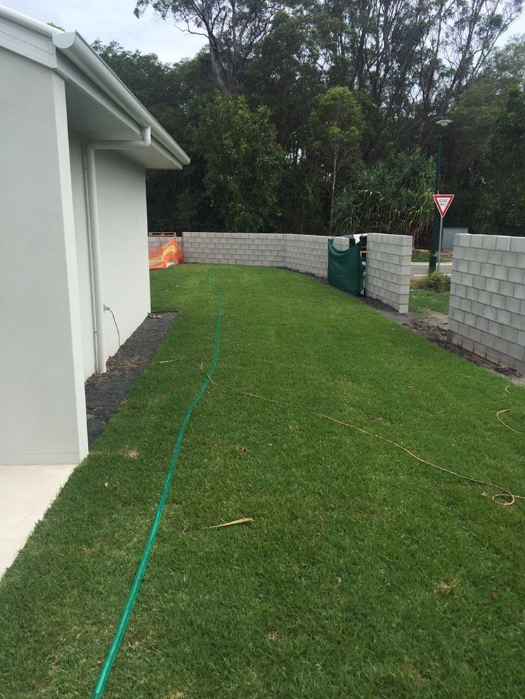 Sir Walter Turf layed in the backyard of a house at Noosa