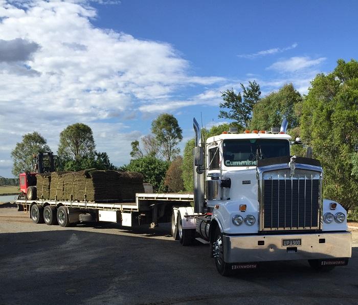 Turf Supply Casey Truck 3