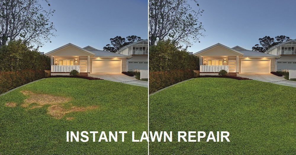 Instant Lawn Repair CT